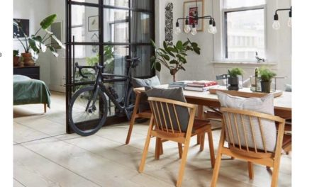 Ontvang boek Living in the City gratis bij abonnement Home Deco Business Magazine!