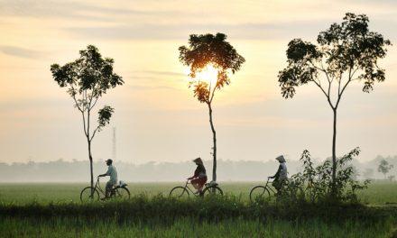 Yvonne van Opdorp: 'China heeft het gewone leven weer opgepakt'