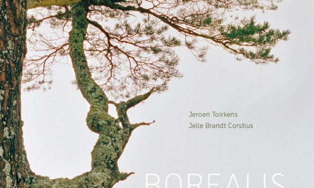 Boreale bossen zorgen voor ecologische balans
